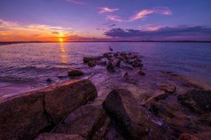 beach-florida-tampa
