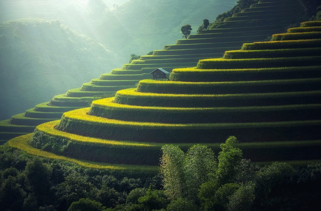 Bali – Everything You Need to Know About the Island