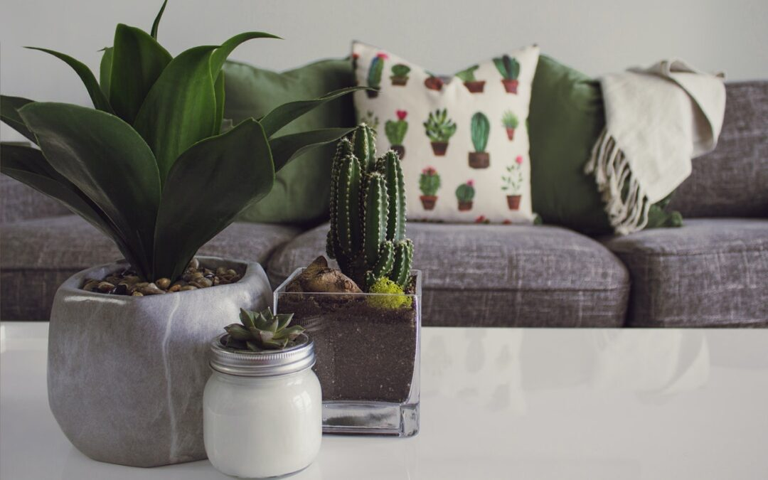 How To Decorate Your Home With Sustainability In Mind